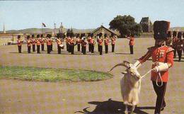 Canada, Quebec, La Citadelle, Regiment, Usage 1956 - Québec - La Citadelle
