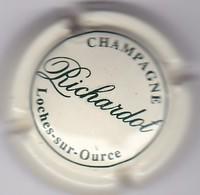 P35 : CHAMPAGNE RICHARDOT 6 - Other