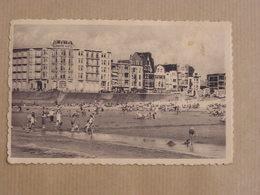 KNOCKE ZOUTE Albert Plage   Mer Zee  België Belgique Carte Postale Postcard - Knokke