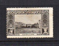 Austria - ERINNOFILO - Reichverein Fur Kinderschutz - Trieste - Piazza Grande - Linguellato- Vedi Foto - (FDC11682) - Cinderellas
