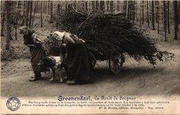 1postkaart GROENENDAAL C1913  éd Epousse Goossens HOEYLAERT - DESSAIX Nr 10 Attelage De Chien Fagots, SOIGNES FORET - Hoeilaart