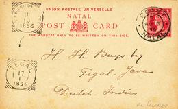 267/27 - SINGAPORE / NL INDIES - Entier NATAL POINT NATAL 1896 Vers TEGAL Via COLOMBO Et N.I. AGENT SINGAPORE - Indes Néerlandaises