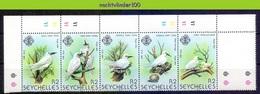 Nev049 FAUNA VOGELS STERN FAIRY TERN BIRDS VÖGEL AVES OISEAUX SEYCHELLES 1981 PF/MNH - Collections, Lots & Series
