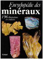 Encyclopédie Des Minéraux Editions Gründ 1980 - Minéraux & Fossiles