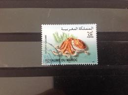 Marokko / Maroc - Zeedieren (6.50) 2004 - Marokko (1956-...)