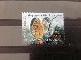 Marokko / Maroc - Zeedieren (7.80) 2008 - Marokko (1956-...)