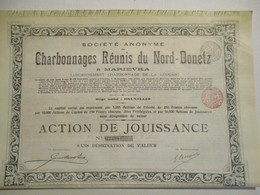 Charbonnages Réunis Du Nord Donetz - Marievka - Action De Jouisance ( De 56500 Titres) - Russie
