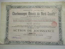 Charbonnages Réunis Du Nord Donetz - Marievka - Action De Jouisance ( De 63215 Titres) - Russie