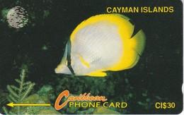 TARJETA DE CAYMAN ISLANDS DE UN PEZ  (FISH-PEZ-POISSON) 5CCIB - Cayman Islands