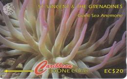 TARJETA DE ST. VINCENT & GRENADINS DE UNA ANEMONA 52CSVG (FISH-PEZ-POISSON) - San Vicente Y Las Granadinas