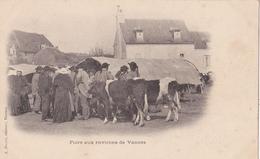 Foire Aux Environs De Vannes/ Réf:fm692 - Vannes