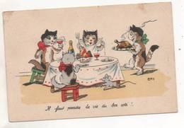 39056  -  Chats  Humanisés  -  Emy  -   Il Faut  Prendre La Vie Du Bon Côté - Illustrateurs & Photographes