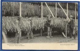 CPA Australie Australia Métier Tabac Tobacco Non Circulé - Aborigènes