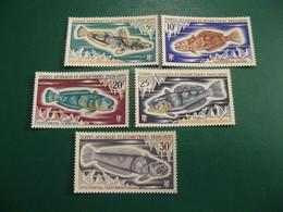 TAAF YVERT POSTE ORDINAIRE N° 34/38 - TIMBRES NEUFS** LUXE - MNH - SERIE COMPLETE - COTE 26,00 EUROS - Französische Süd- Und Antarktisgebiete (TAAF)