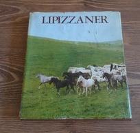 LIPIZZANER Dr. Vet. Med. Heinz Nurnberg VEB Deutscher Landwirtschaftsverlag Berlin 1980 Illistrated Book Horse Pferde - Animals