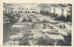 Gent - Gand - Floralies Gantoises - Gentse Floralien - J. De Vreese - Gent