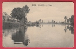 Nalinnes - L'étang - 1911 ( Voir Verso ) - Ham-sur-Heure-Nalinnes