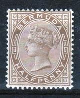 Bermuda Queen Victoria 1880 Half Penny Brown Stamp. - Bermuda