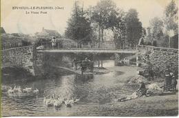 EPINEUIL LE FLEURIEL  (Cher) Le Vieux Pont  (attelage, Oies Et...lavandière) - France