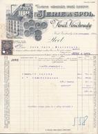 1919 RECHNUNG D.Fa. JERIE A SPOL. Vinchrady, 10 H Stempelmarke, Sehr Schönes Lithographisches Firmenlogo, A3 Format, ... - Invoices & Commercial Documents