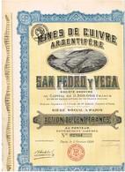 Ancienne Action - Mines De Cuivre Argentifère San Pedro Y Vega - Titre De 1920 - N° 02934 - Mines