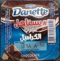 Egypt - Couvercle De Chocolate Danone Dannite  Chocolate (foil)(Egypte) (Egitto) (Ägypten) (Egipto)(Egypten)Africa - Milk Tops (Milk Lids)