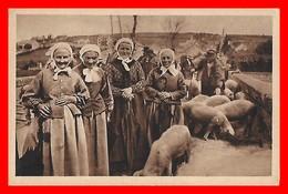CPA FOIRES.  Nos Braves Morvandelles à La Foire Aux Cochons, Animé...H339 - Foires