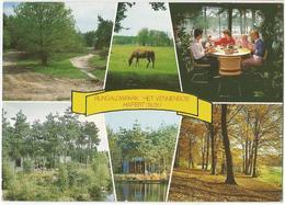 "8Eb-530: Bungalowpark Het Vennenbos Hapert(N.Br.)>gistel1988:"" Nederlandse Postzegels Je Kunt Ze Ook Verzamelen - Pays-Bas"