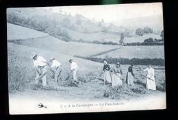 A LA CAMPAGNE LA FAUCHAISON - Cultures