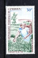 Camerun  - 1968. Raccolta Del The. Collection Of Tea. MNH - Agricultura
