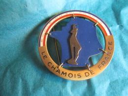 Insigne Sport à épingle/SKI/ Ecole Du Ski Français/ Le Chamois De France / FIA/ LYON/Vers 1970-80   SPO323 - Invierno