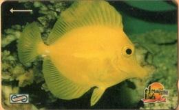 Malaysia - GPT, 8MSAA, Yellow Fish, Fishes, Rif, 50RM, 34.000ex, 1992, Used - Malaysia