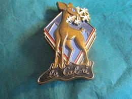 Insigne Sport à épingle/SKI/ Le CABRI /Vers 1970-80   SPO326 - Winter Sports