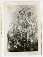 Sapin De Noel Christmas Tree Lumière Bizarre Etrange Weird Ugly Light Abstract Flou Blurry - Objects