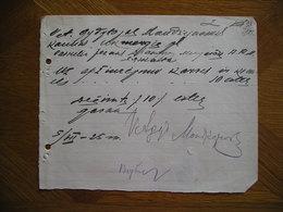 LITHUANIA Bill Karves Ir Kiaules Apziurejimas Vet.gyd.Mondzejauskas Kaunas 1925 - Invoices & Commercial Documents