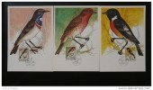 3 Cartes Maximum 1994 Oiseaux Maximum Card Birds - FDC