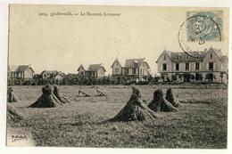 Quiberville - Hameau Levassor  - Mise En Gabarit Après Fauchage - Cultures