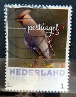 2018 Netherlands Birds,oiseaux,vögel,pestvogel Used/gebruikt/oblitere - 2013-... (Willem-Alexander)