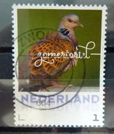 2018 Netherlands Birds,oiseaux,vögel,zomertortel Used/gebruikt/oblitere - 2013-... (Willem-Alexander)