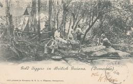 British Guiana  Gold Diggers Bg324 - Autres