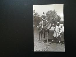 AFRIQUE ÉGYPTE VACANCES TOURISTES  LOT 5 PHOTOS ORIGINALES ET UNE VIEILLE CARTE POSTALE ANNÉES 1950 - 1960 - Luoghi