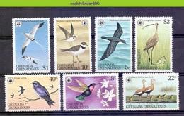 MisF26 WWF FAUNA VOGELS KOLIBRIE EEND DUCK PLOVER HUMMINGBIRD BIRDS VÖGEL AVES OISEAUX GRENADA GRENADINES 1978 ONG/MH - W.W.F.
