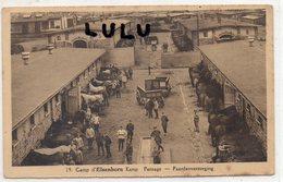 BELGIQUE : édit. Marx & Niessen Au : Camp D Elsenborn Pansage Des Chevaux - Elsenborn (camp)