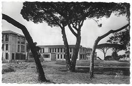 31)  TOULOUSE  - Hopital De Purpan - Pavillon Des Enfants Et Pavillon Neurologique - Toulouse