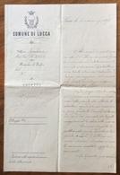 """COMUNE DI LUCCA  LETTERA DEL SINDACO PER ABBATTERE """"...30 Olmi Sul Baluardo S.IACOPO..."""" In Data 3/3/1898 R - Manoscritti"""