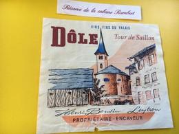 8798 - Dôle Tour De Saillon Réserve De La Cabane Rambert Suisse - Bergen