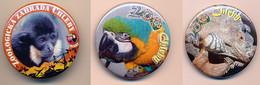 Button ZOO Chelby, Czech Rep. - Iguana - Badges