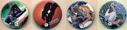 Button ZOO Rovno - Ukraine - Pelican - Badges