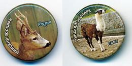 Button ZOO Minsk, Belarus - Lama - Badges