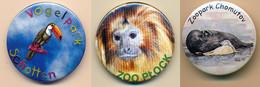 Button Vogelpark Schotten, Germany - Toucan (logotype) - Badges